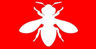 害虫駆除業務のイメージ